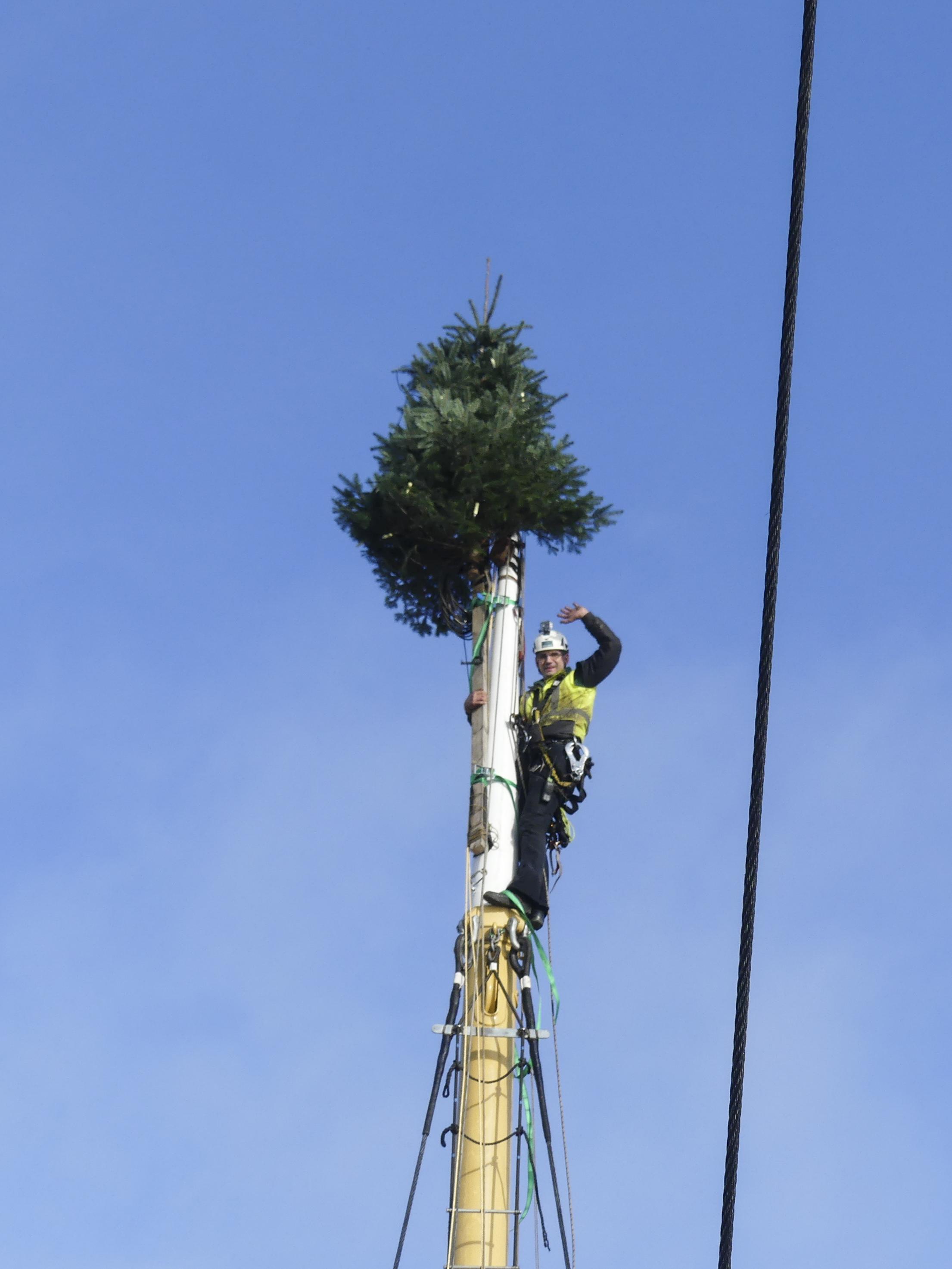GABR_PEKING_Weihnachtsbaum aufriggen-1010587